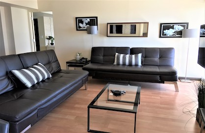 Living Area & Sofa Bed