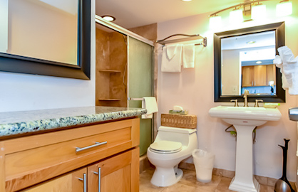 Remodeled Granite Bathroom