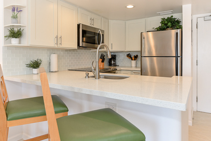 Modern Bright Kitchen (2019)