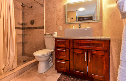 Remodeled Elegant Bathroom