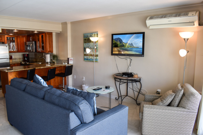 Futon Couch, Flat Screen TV, Split AC