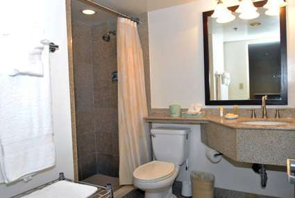 Large bathroom / Walkin Shower