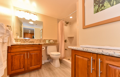 New Remodeled Modern Bathroom