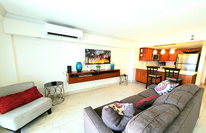 Modern Living Area - Split AC System