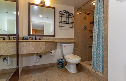 Large Granite Bathroom