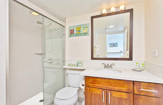 Modern Bathroom w/ Walk-in Shower
