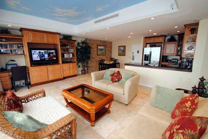 Large Spacious Luxury Living Room