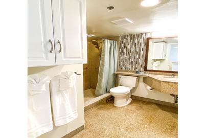 Modern Granite Bathroom (Handicap Accessible)
